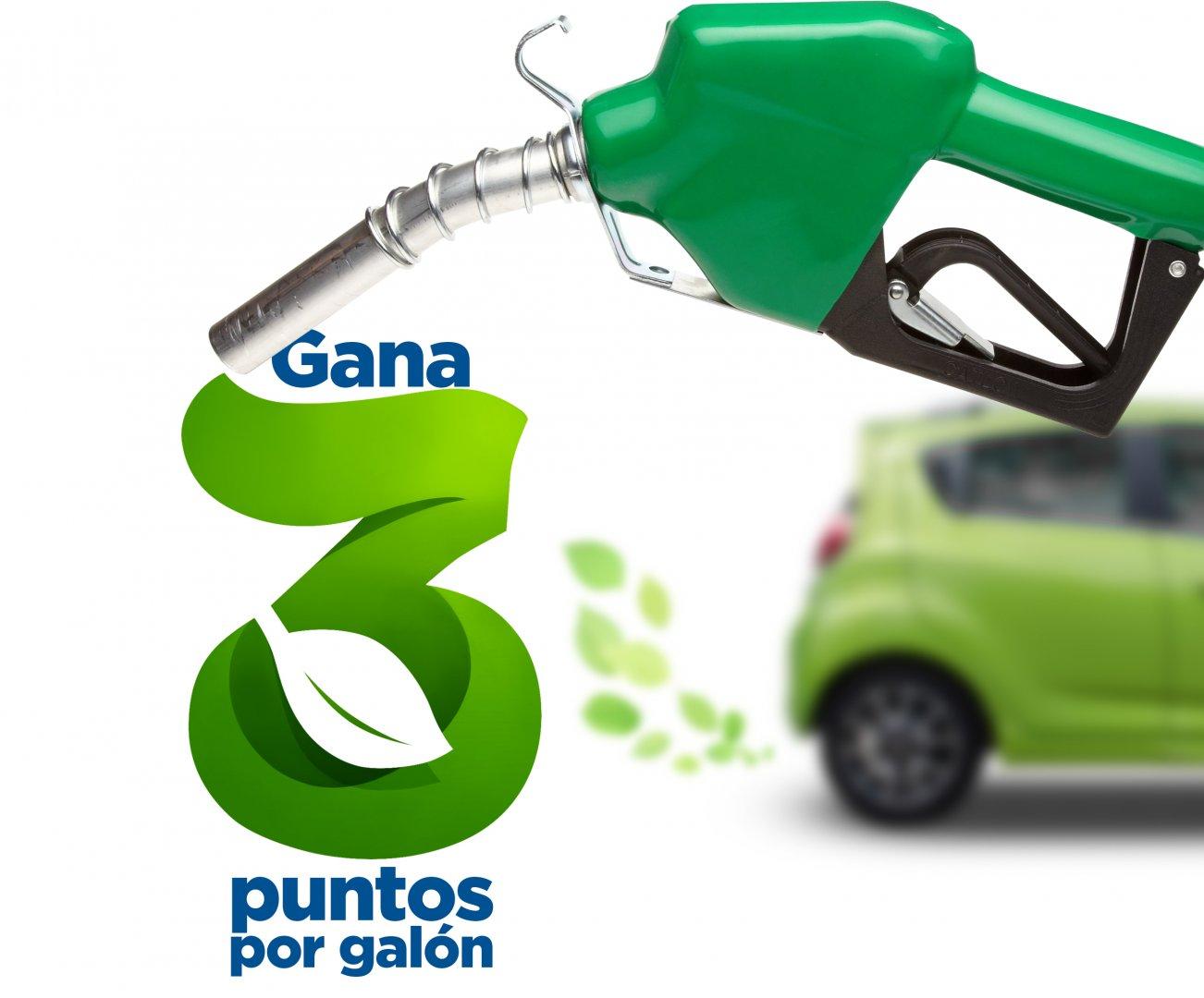 Gasauto_Guatemala_zeta-premia_6